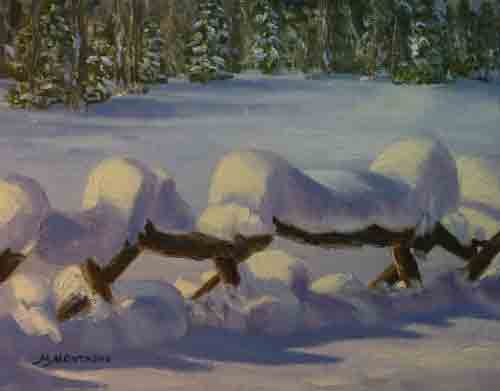 """Snow Draped Fence""       11x14      Week 3 - Copyright by Matt and Judy Montagne"