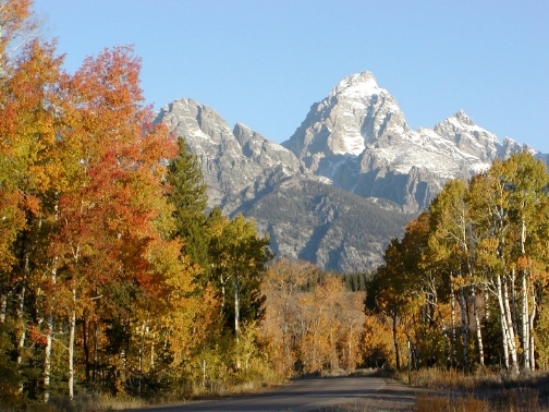 Fall Tetons From Moose-Wilson Road - 2003 by Matt and Judy Montagne