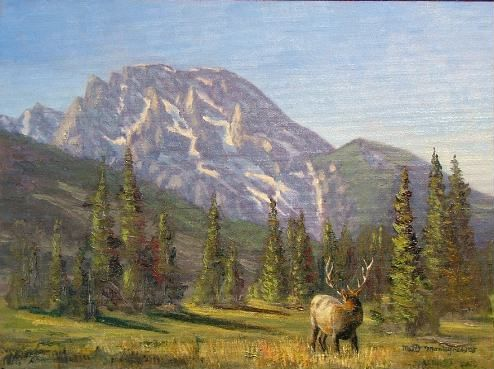 Elk Looking Back At Mount Moran 12x16 *SOLD* - Copyright by Matt and Judy Montagne