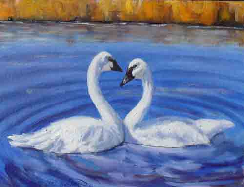 """Swan Heart""      11x14    SOLD - Copyright by Matt and Judy Montagne"