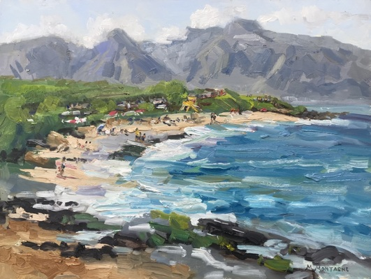 """Hookipa Beach Life"" 12x16 $850 - Copyright by Matt and Judy Montagne"