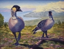 The Nene Of Haleakala  11x14  giclee prints **Original SOLD**